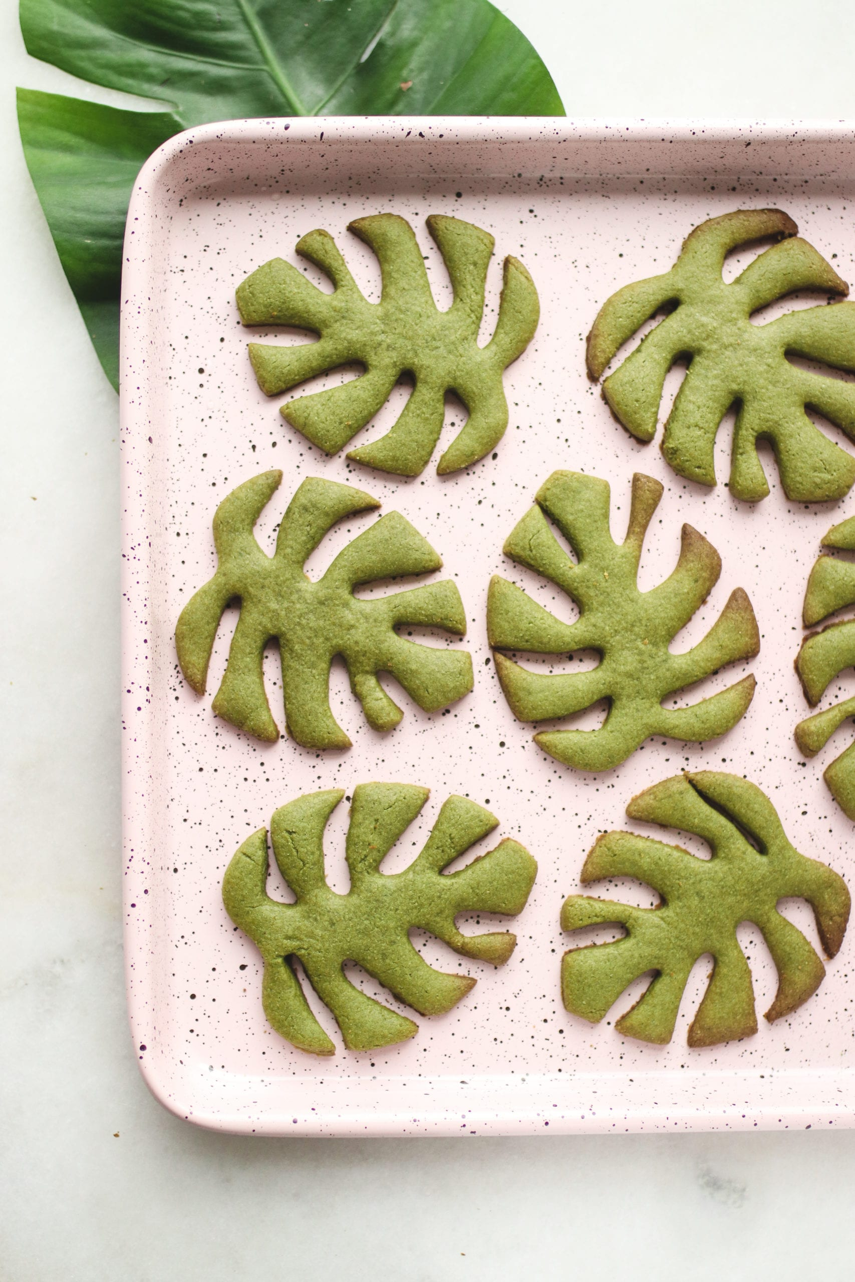 """width=""""474"""" height=""""711""""></p><p>My favourite plant + my favourite tea flavour = the cutest Matcha Monstera Cookies! I've been dreaming up this cookie recipe and shape for a long time but couldn't figure out how to go about making the cookies the perfect monstera shape. I also doubted that tahini and matcha would taste good together, but I'm glad I gave it a shot, because once again, my classic Maple Tahini Cookie recipe base has come to the rescue!</p><p><img src=""""https://comoservegano.com/wp-content/uploads/2021/06/IMG_9938.jpg"""" alt="""