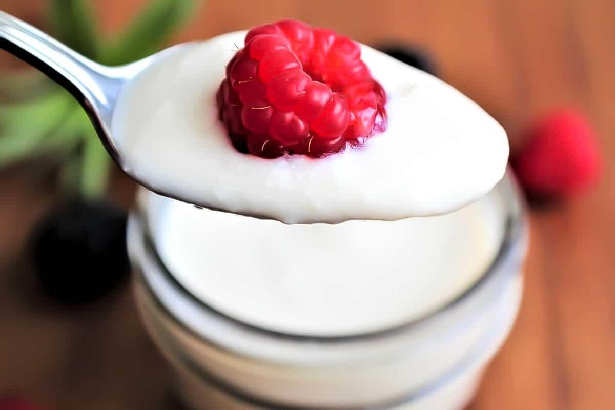 Yogur de soja y una frambuesa en una cuchara.
